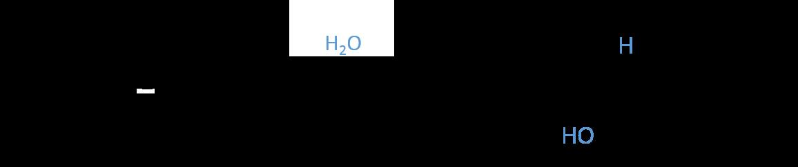 Enoyl coa hydratase rxn beta ox
