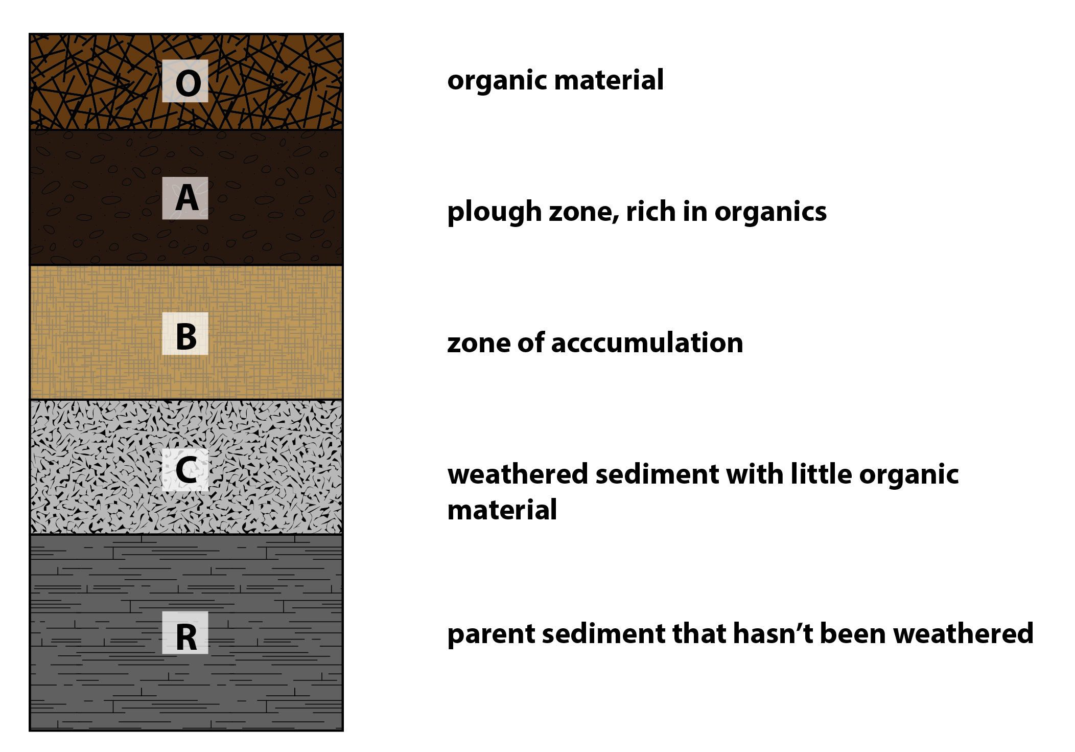 Types of soil ap environmental science for Soil and its types