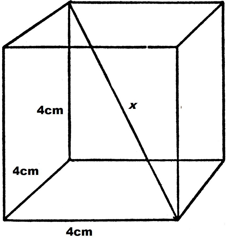 However, The Trick To Solving The Problem Is To Also Draw In The Diagonal  Of The Bottom Face Of The Cube, Which We Labeled